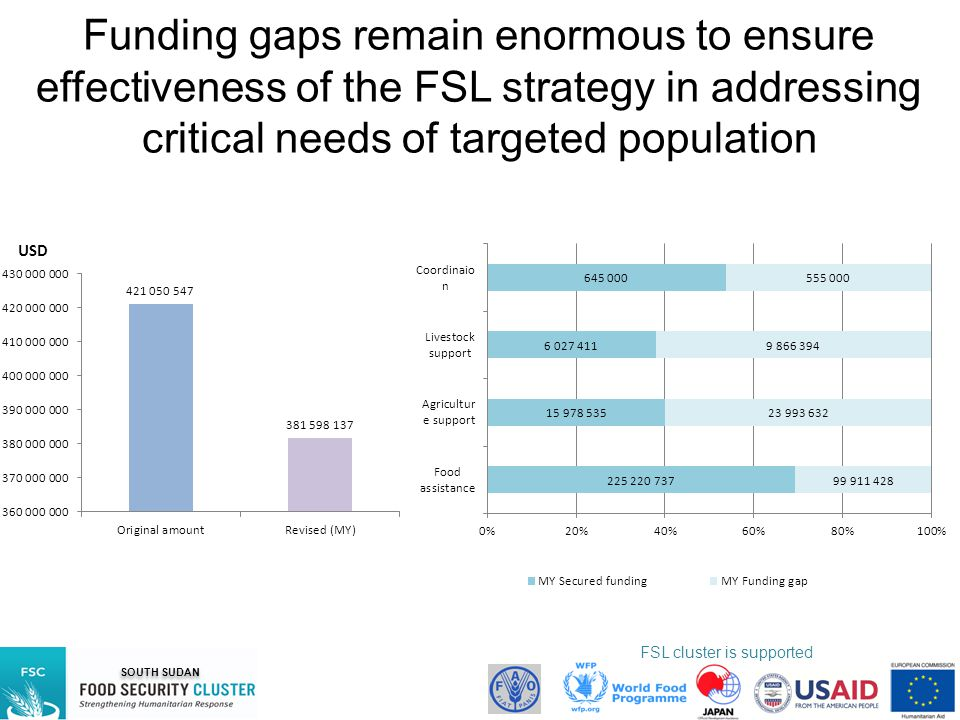 Funding gaps remain enormous to ensure effectiveness of the FSL strategy in addressing critical needs of targeted population