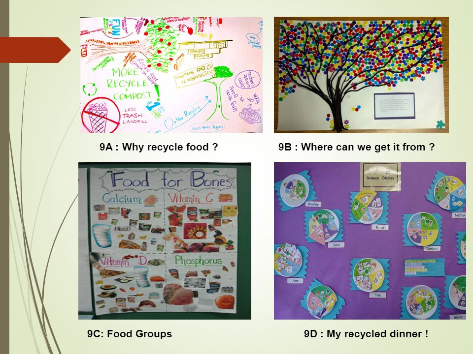 9A : Why recycle food 9B : Where can we get it from 9C: Food Groups 9D : My recycled dinner !