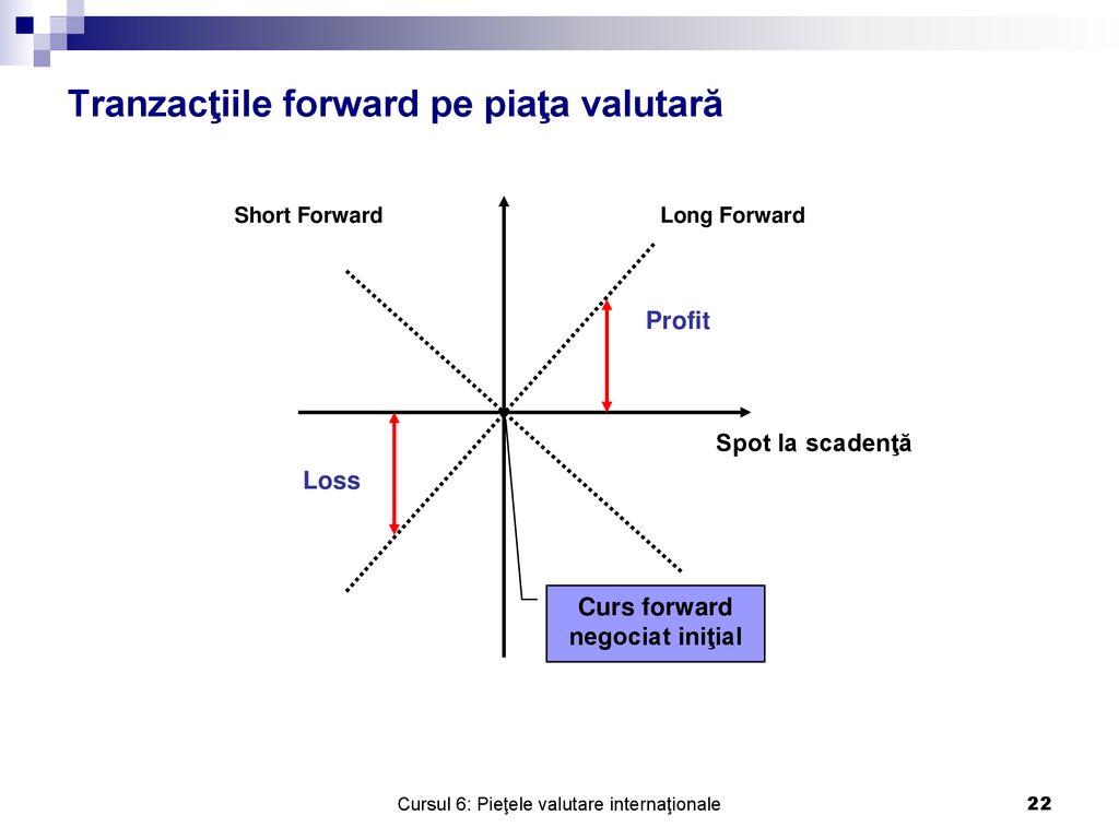 riscuri de piață valutare