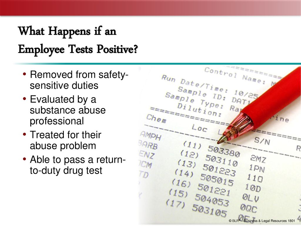 DOT Alcohol and Drug Testing Rules - ppt download