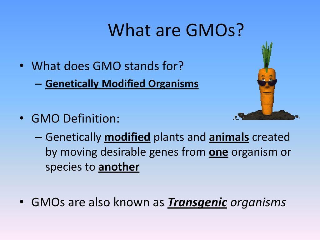 genetically modified foods - ppt download