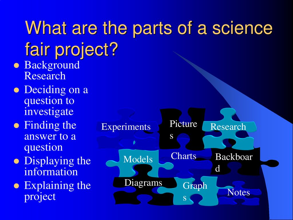 what are the parts of a science fair project