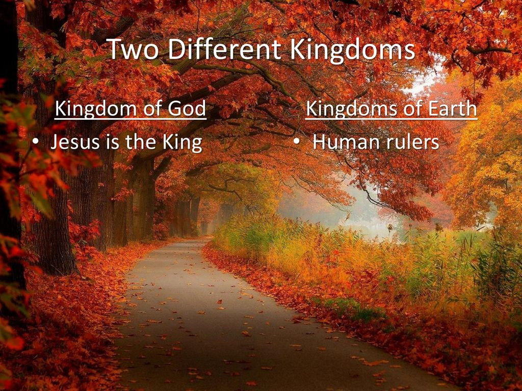 Kingdoms: Living with a Foot in Two Different Kingdoms - ppt