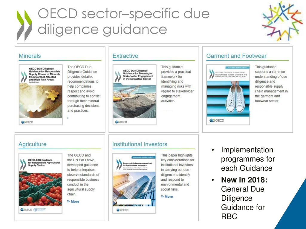 Head Responsible Business Conduct Unit Oecd Ppt Download