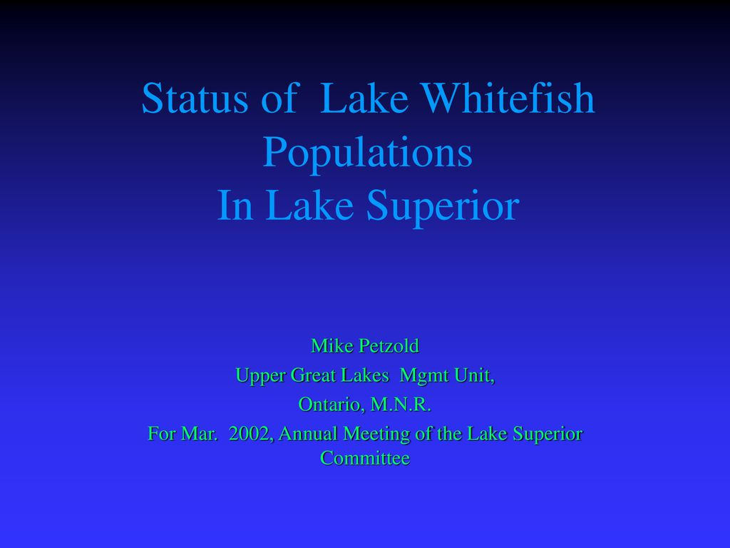 Status of Lake Whitefish Populations In Lake Superior - ppt