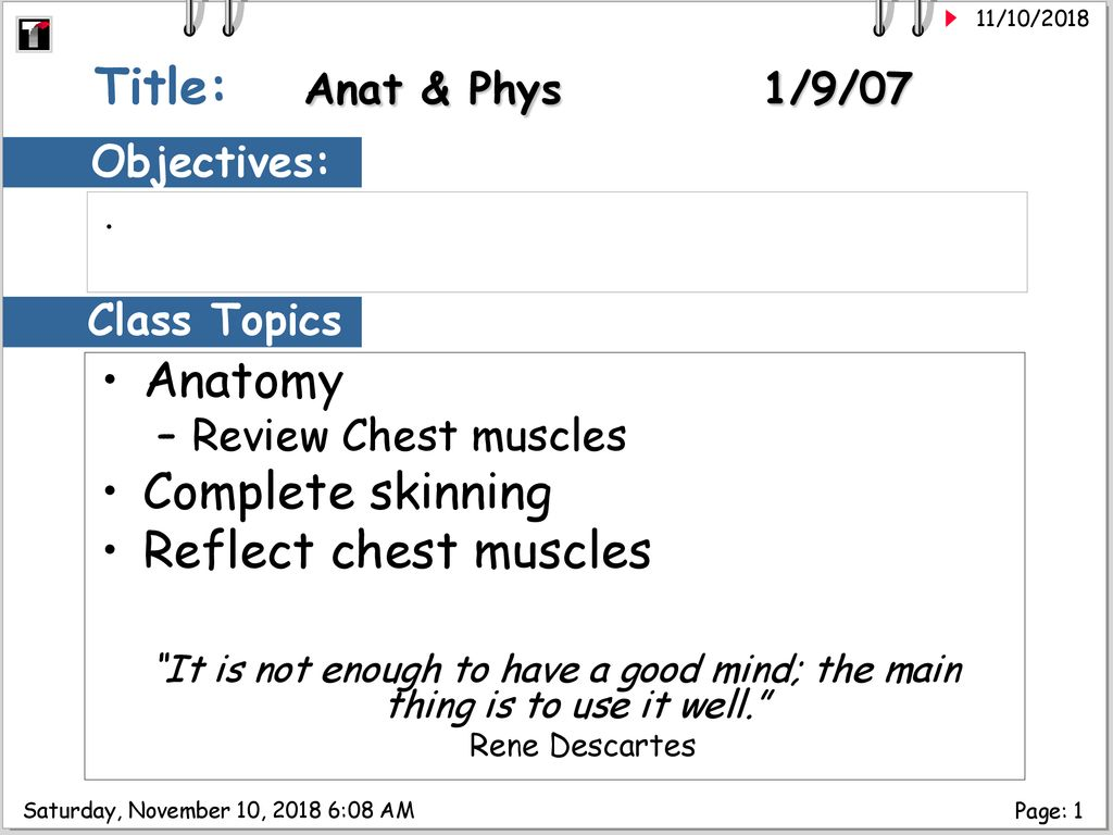 Title: Anat & Phys 1/9/07 Anatomy Complete skinning - ppt