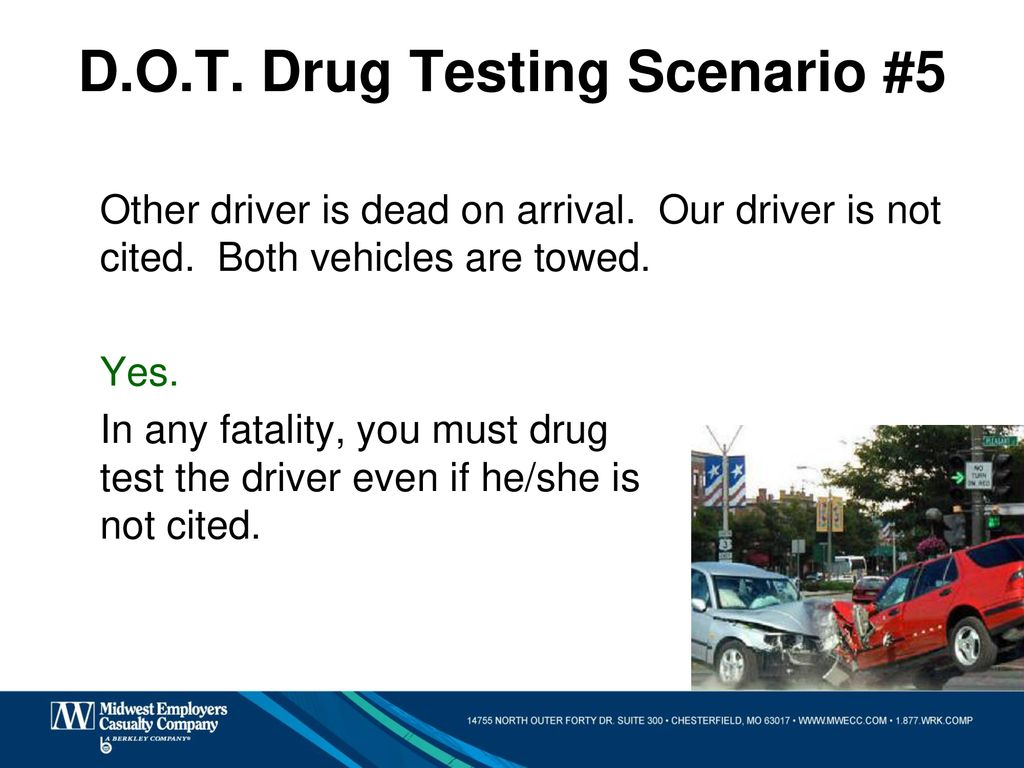 Drug Testing and Training for Public Employers - ppt download