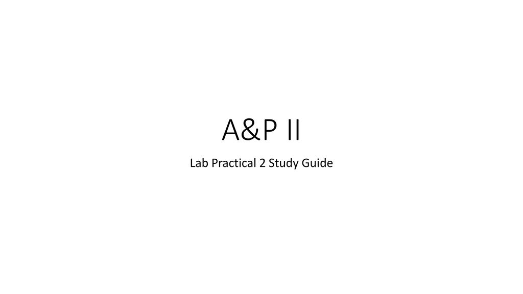 Lab Practical 2 Study Guide - ppt download