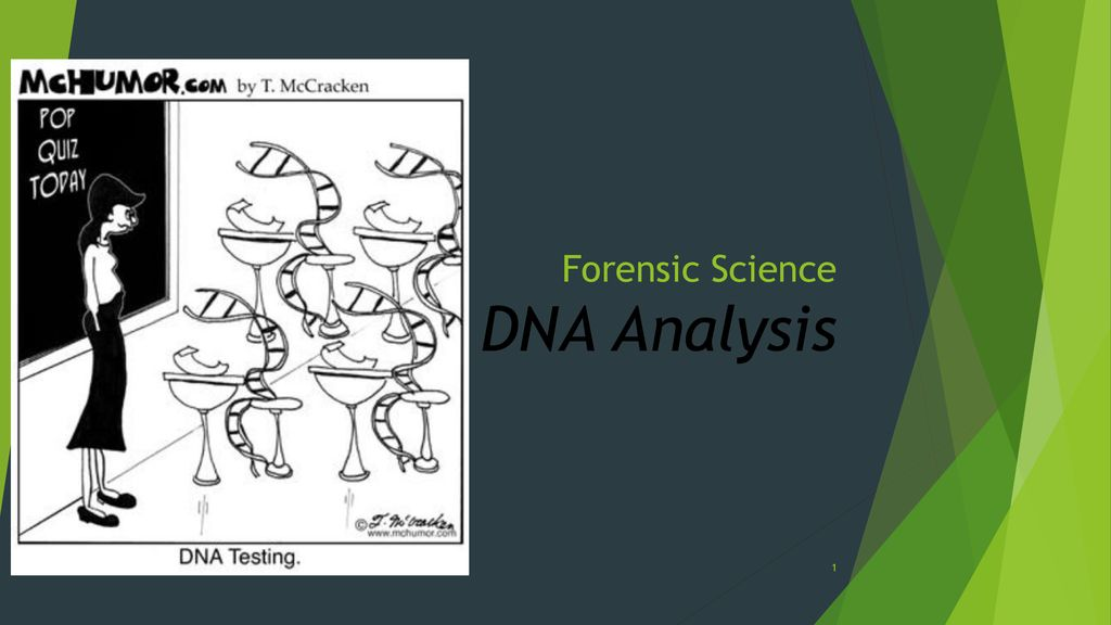 Forensic Science Dna Analysis Ppt Download