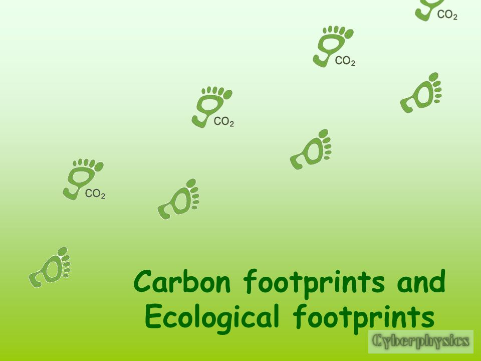Carbon Footprints And Ecological Footprints Ppt Download