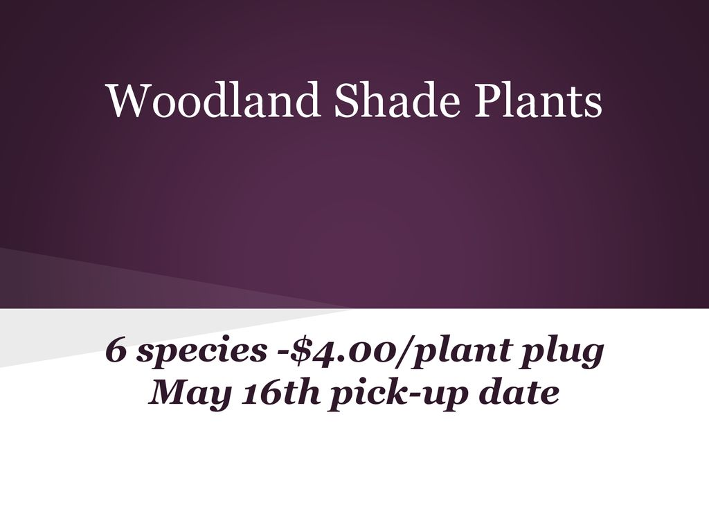 Plano Middle School Native Plant Sale - ppt download