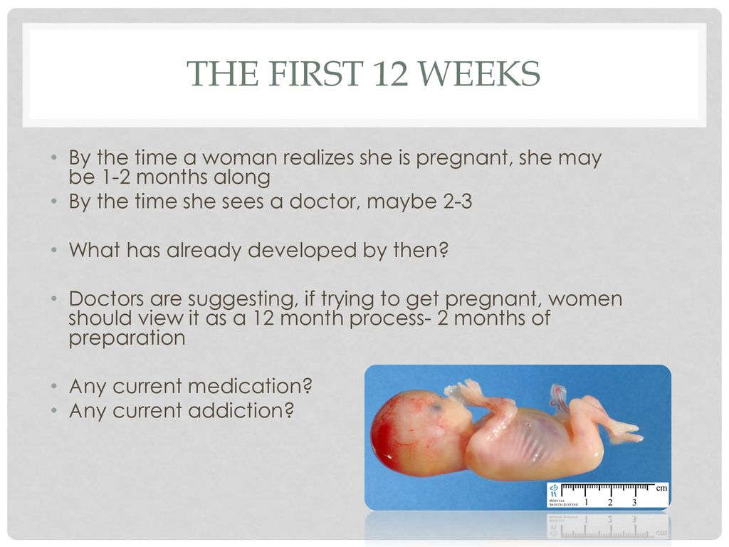 What to expect when you're expecting - ppt download