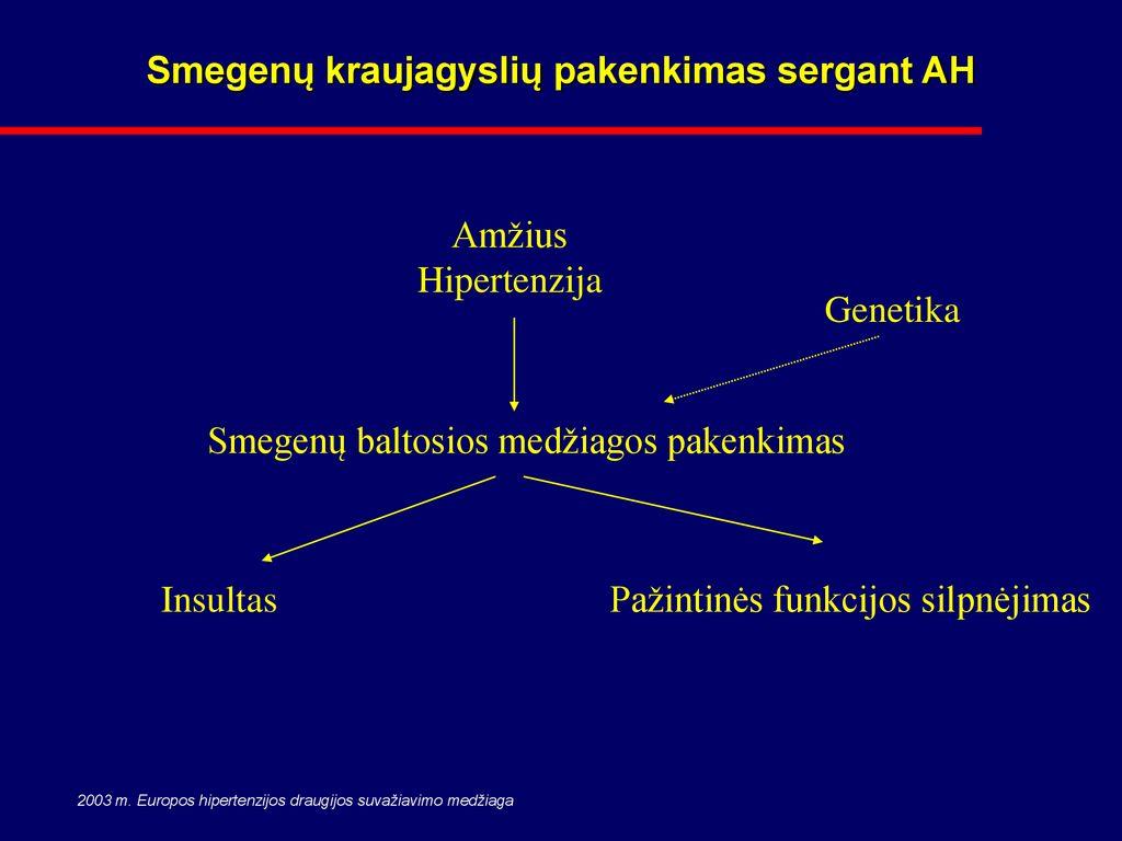 Arterinė hipertenzija blogina smegenų veiklą. Ką daryti? - ingridasimonyte.lt