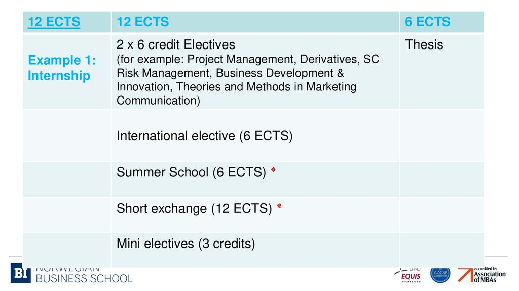 International Elective 6 ECTS