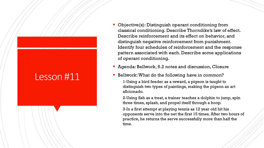 four schedules of reinforcement
