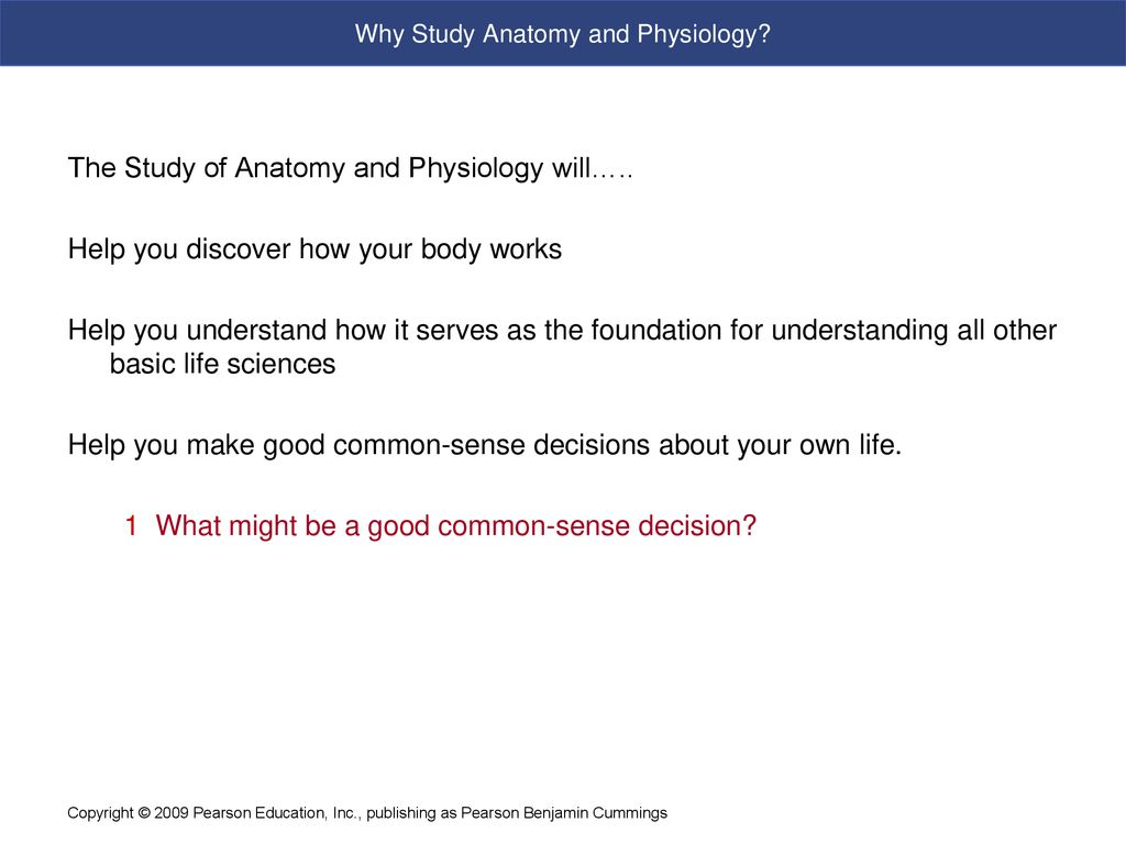 Fundamentals Of Anatomy And Physiology Ppt Download