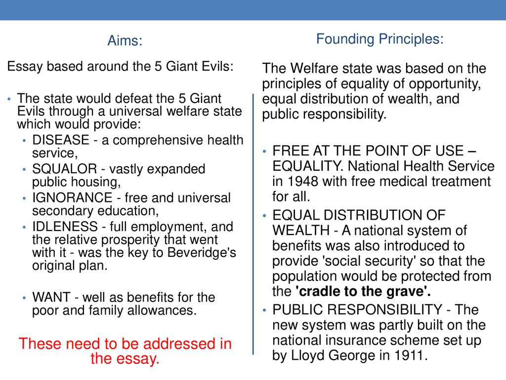 Aims  Founding Principles Of The Welfare State  Ppt Download These Need To Be Addressed In The Essay Buy Business Report also College Book Reports For Sale  Reflective Essay On High School