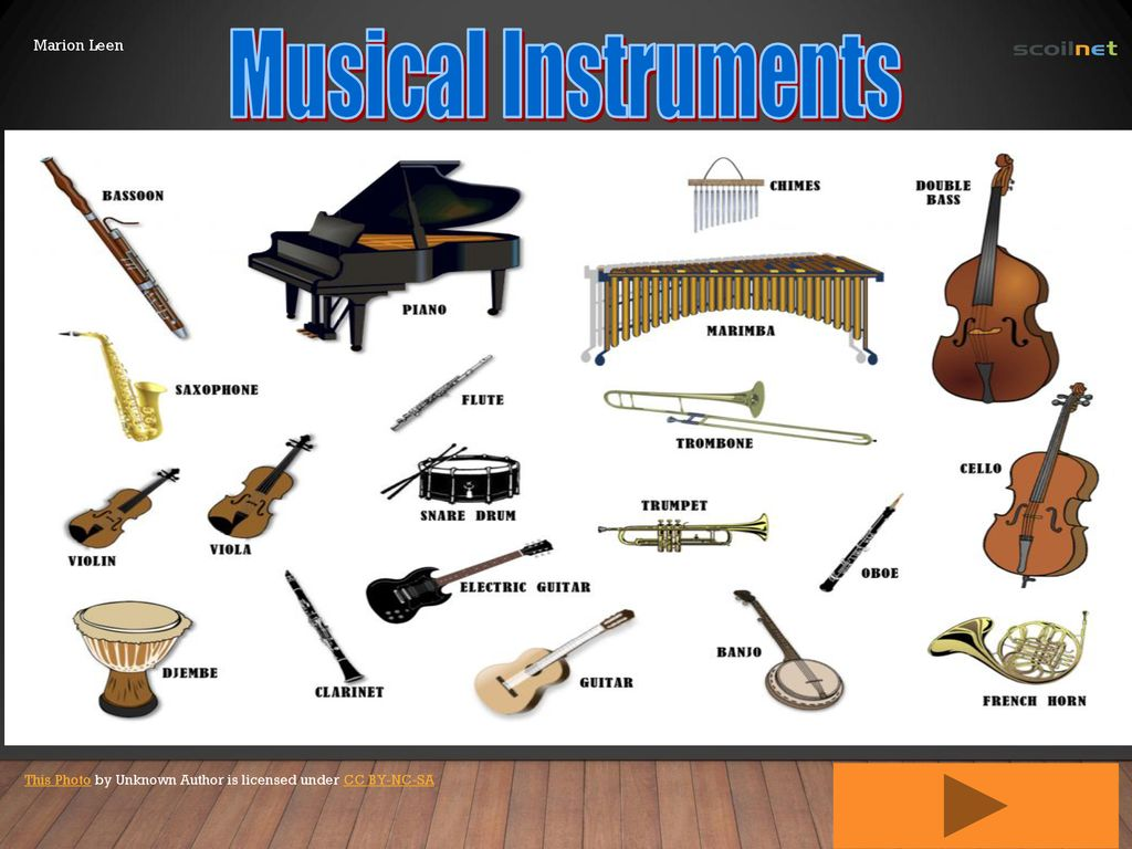 Musical Instruments Marion Leen - ppt download