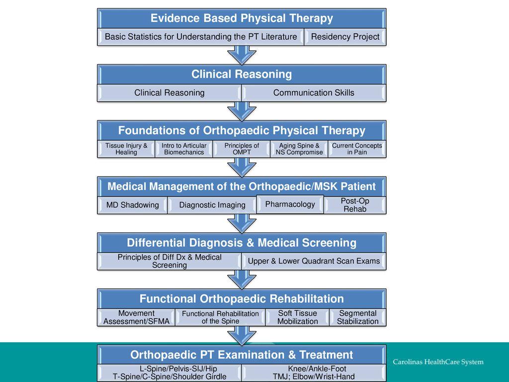 Orthopaedic Pharmacology