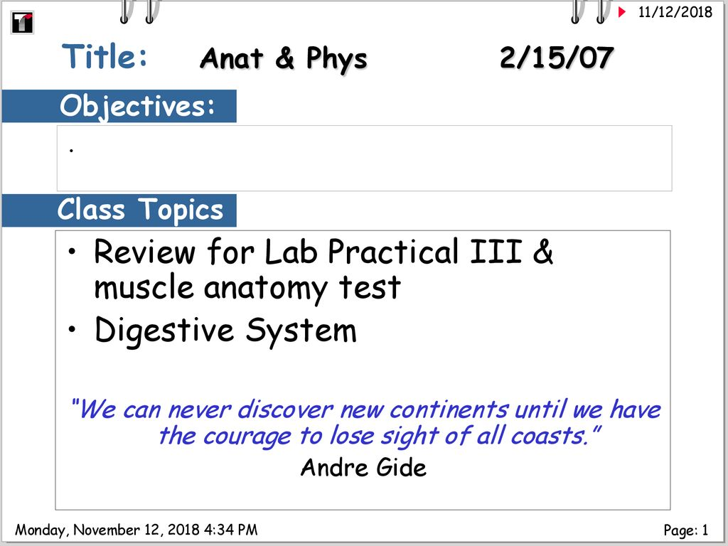 Review for Lab Practical III & muscle anatomy test Digestive
