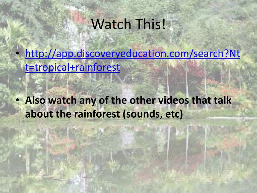 Tropical Rainforest  - ppt download