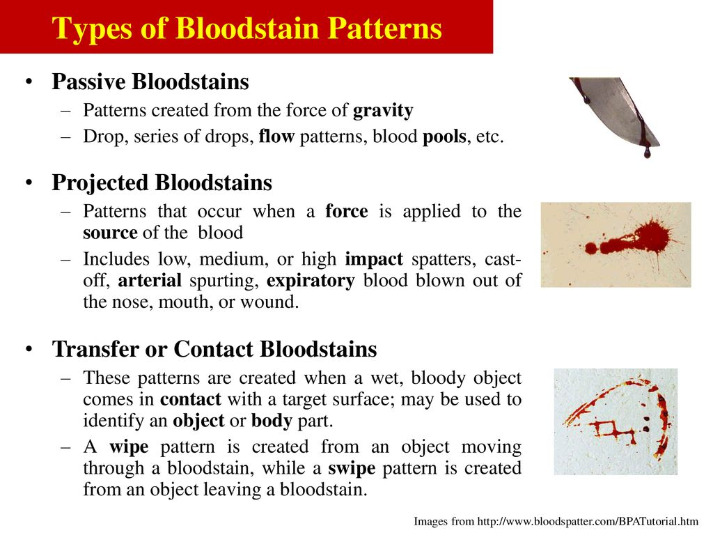 Blood Stain Patterns Best Inspiration Ideas