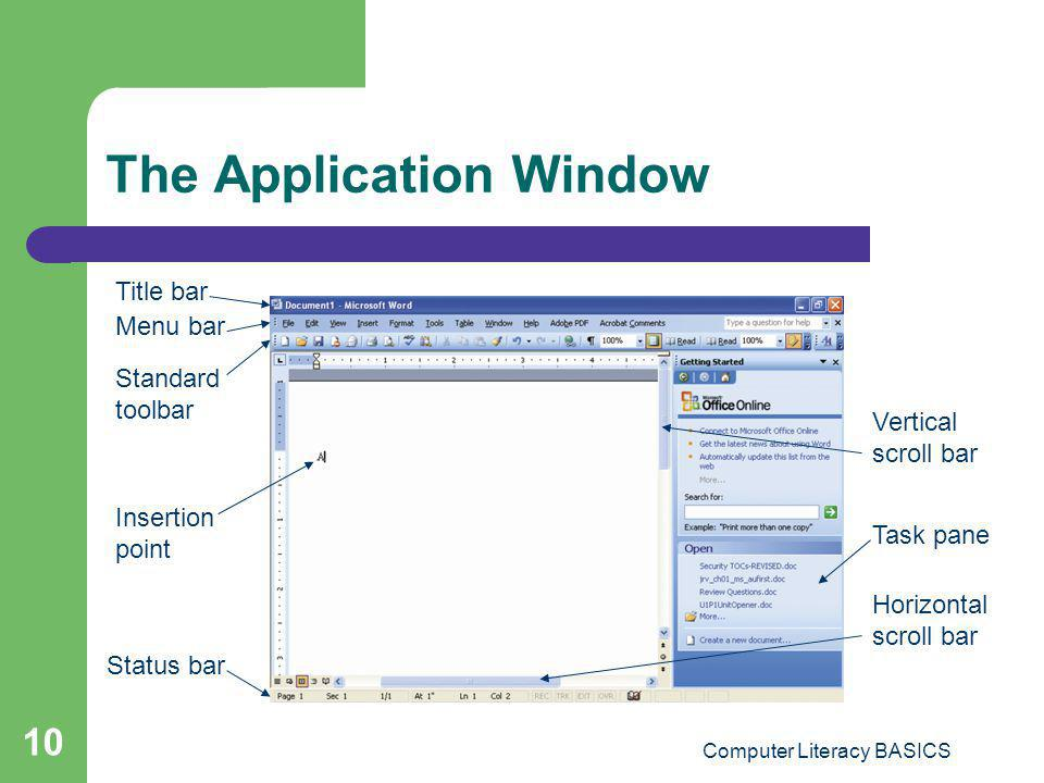 The Application Window