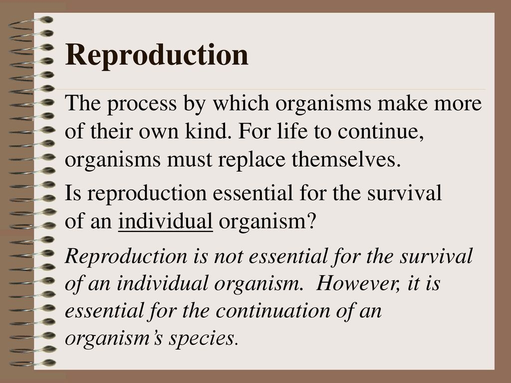why reproduction is essential for organisms