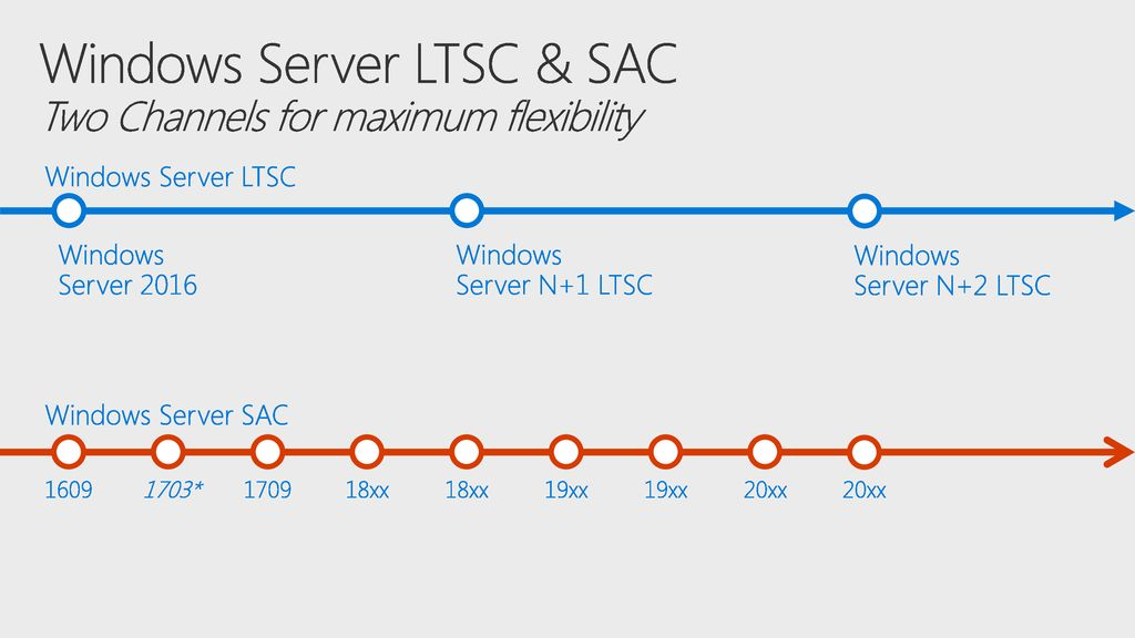 Windows Server LTSC & SAC Two Channels for maximum flexibility