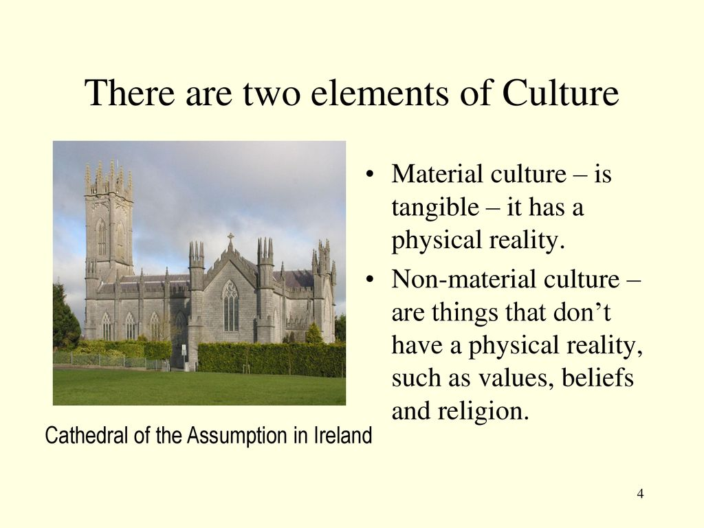 what are two elements of culture