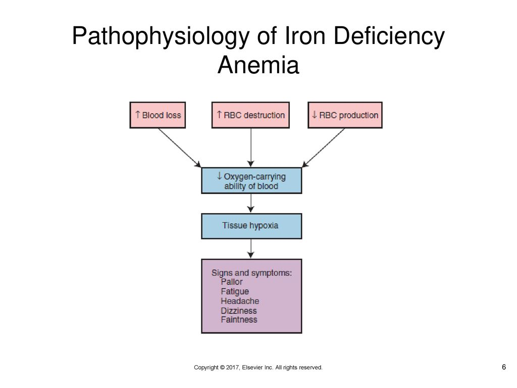 Rose Glen North Dakota ⁓ Try These Iron Deficiency Anemia