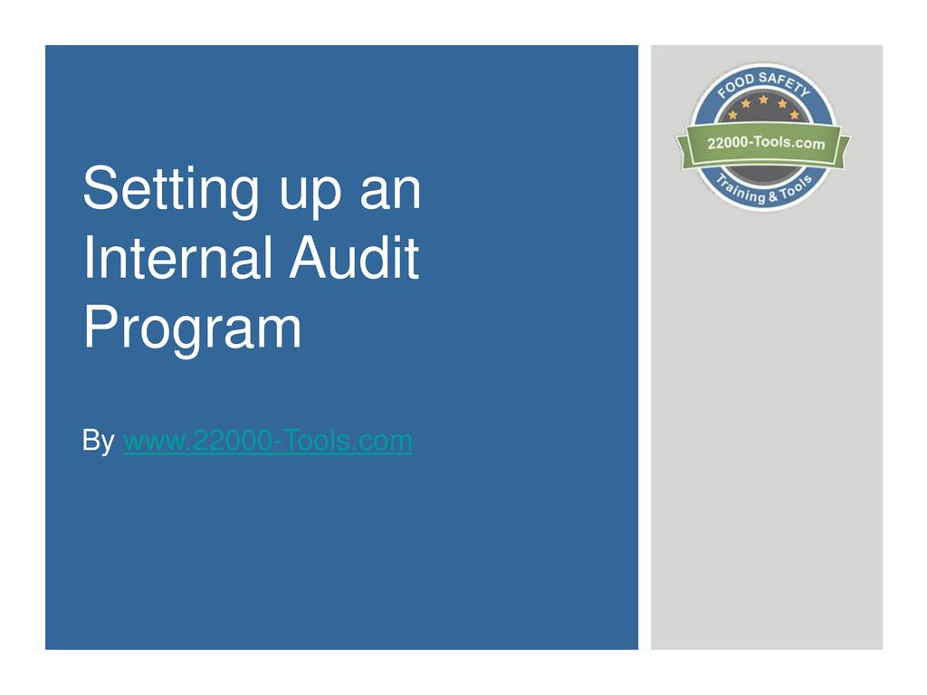 Setting Up An Internal Audit Program Ppt Download