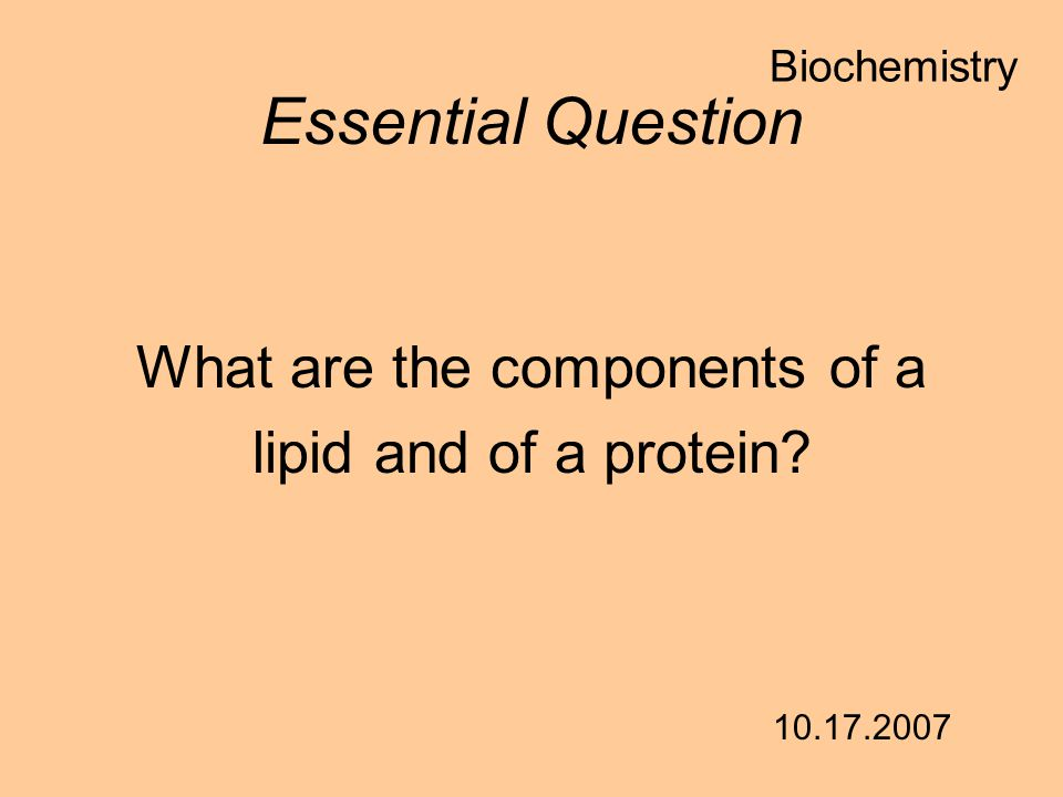 What are the components of a