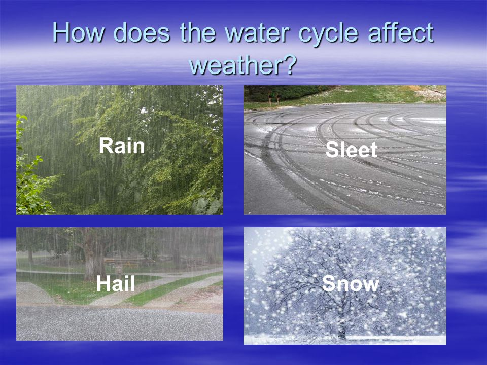 How does the water cycle affect weather