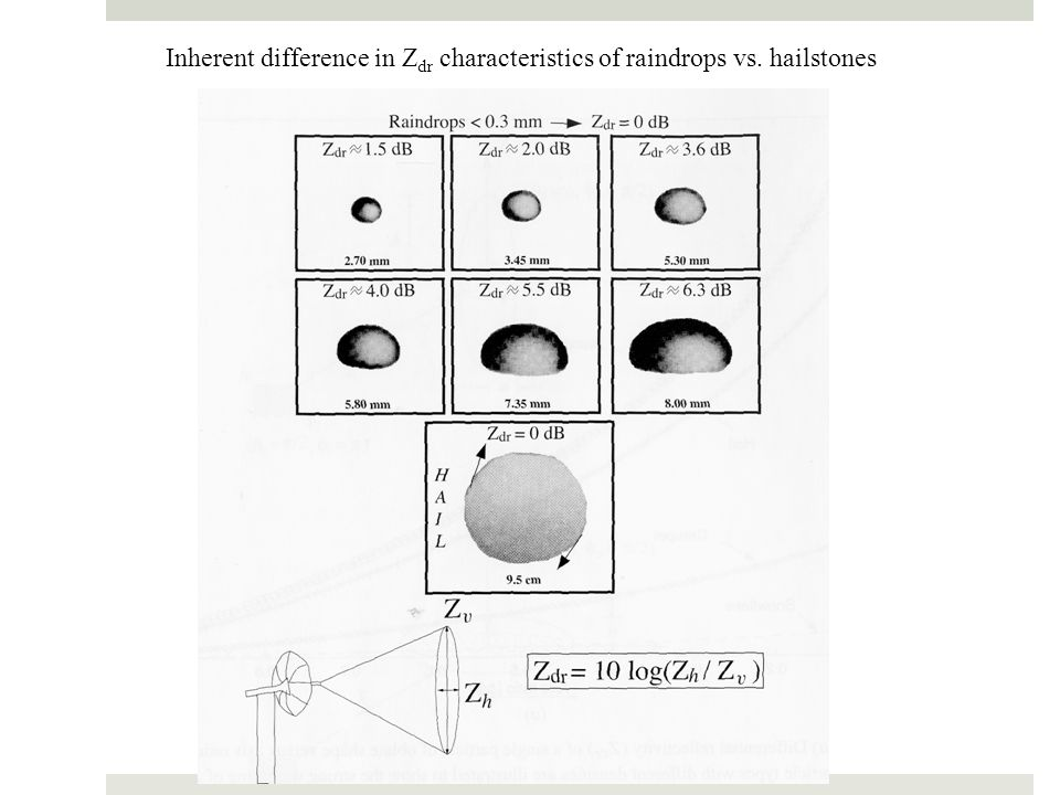 Inherent difference in Zdr characteristics of raindrops vs. hailstones