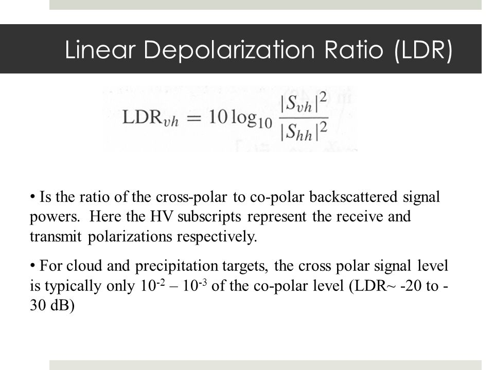 Linear Depolarization Ratio (LDR)