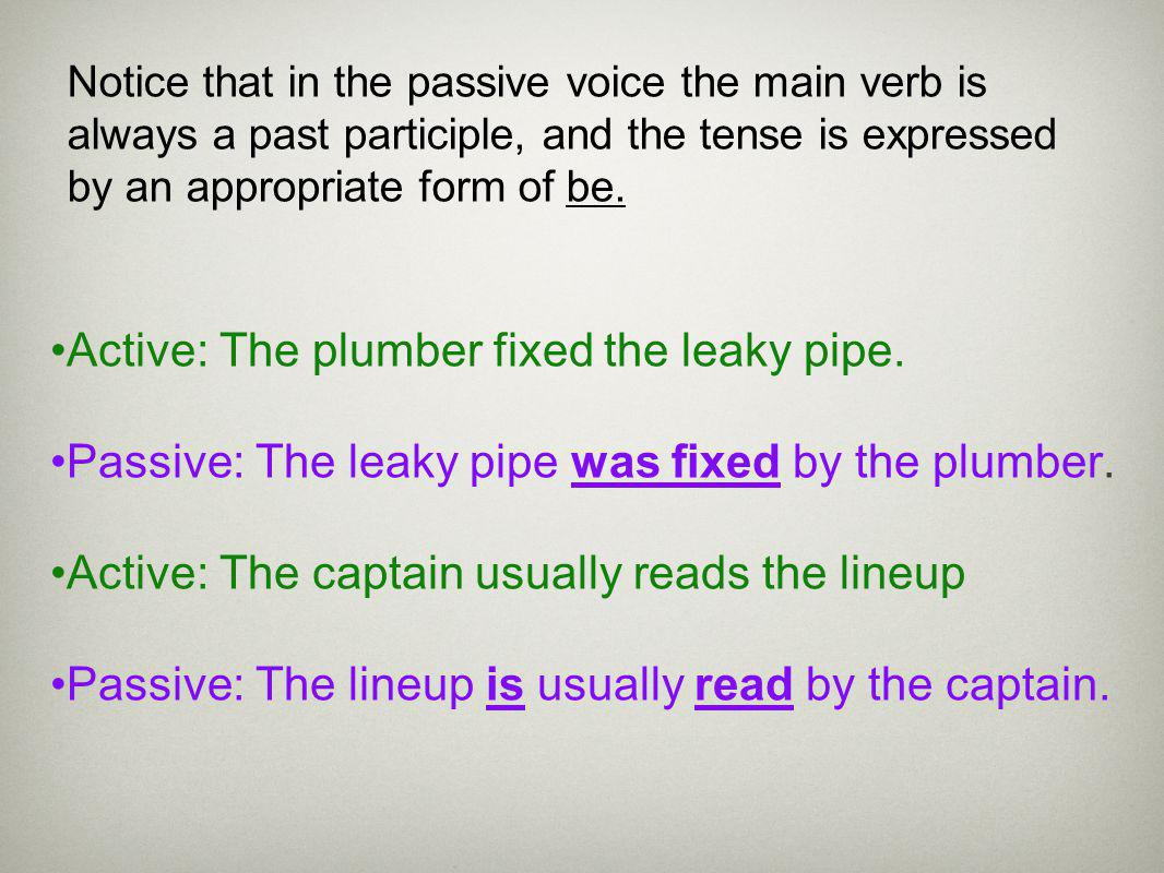 Active: The plumber fixed the leaky pipe.