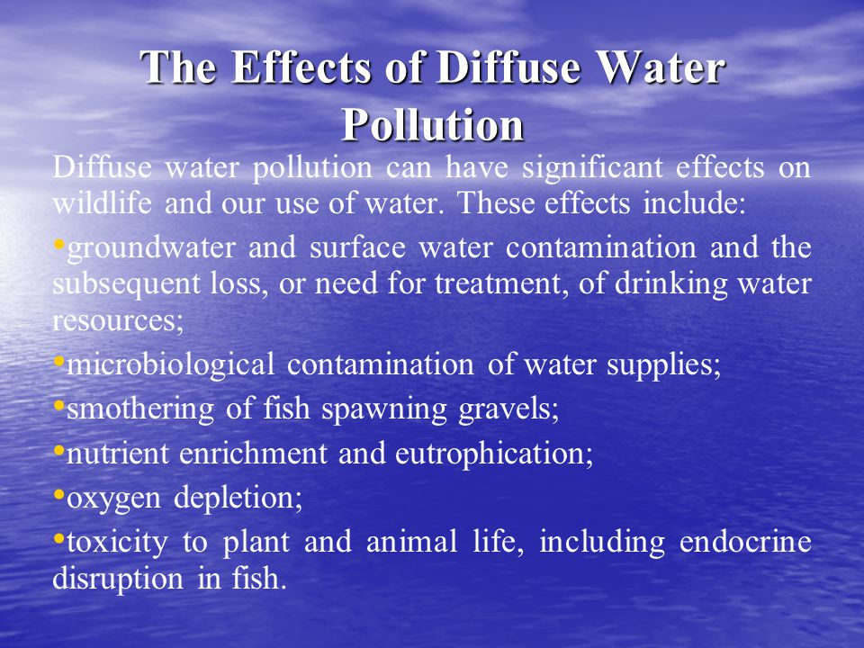 The Effects of Diffuse Water Pollution