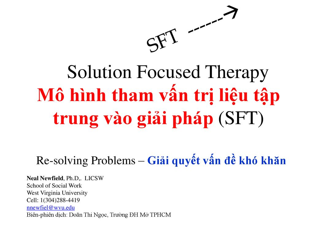 problem solving treatment nhg