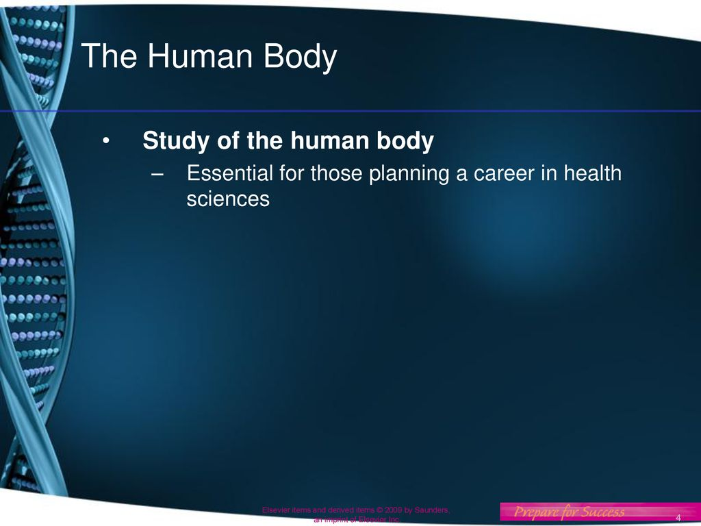 Introduction To Anatomy And Physiology Ppt Download