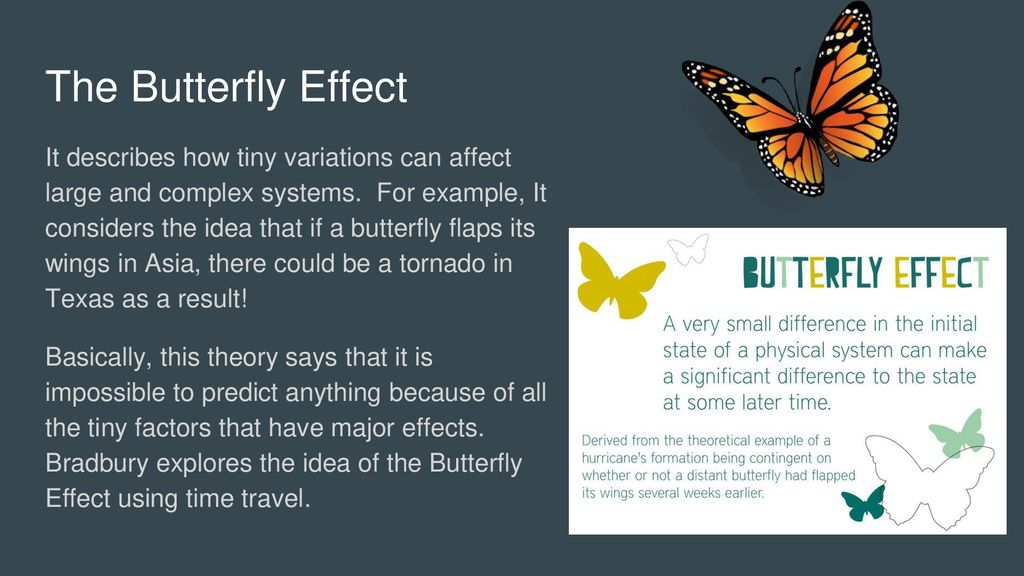 Image result for butterfly flaps its wings in the rainforest and causes a hurricane
