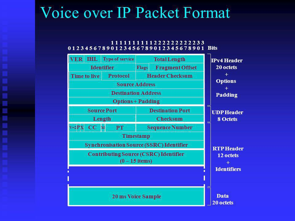 Voice over IP Packet Format