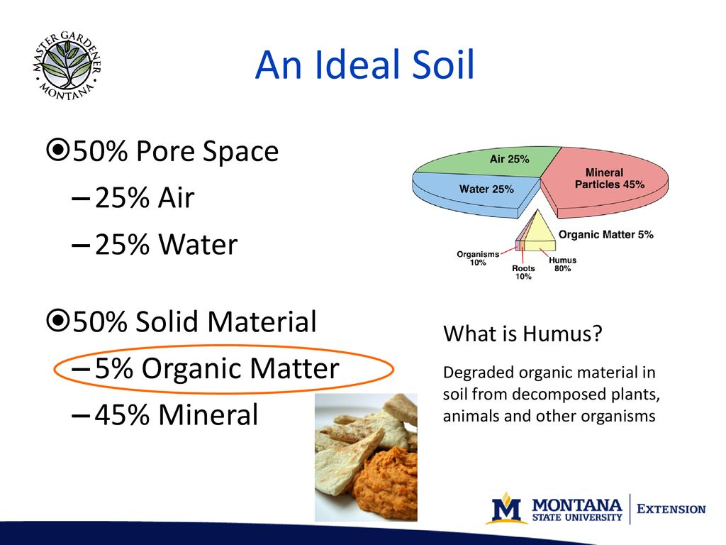 soils, nutrients and fertilizers part i - ppt download