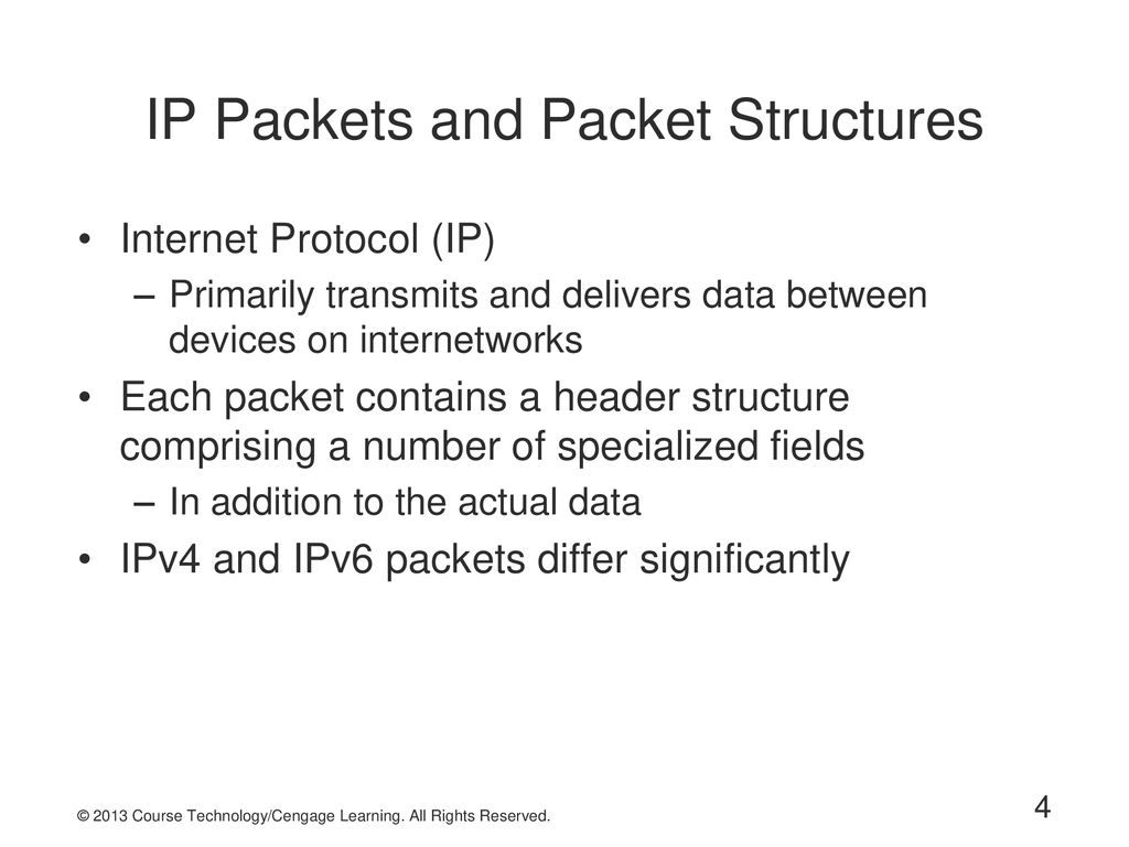 IP Packets and Packet Structures