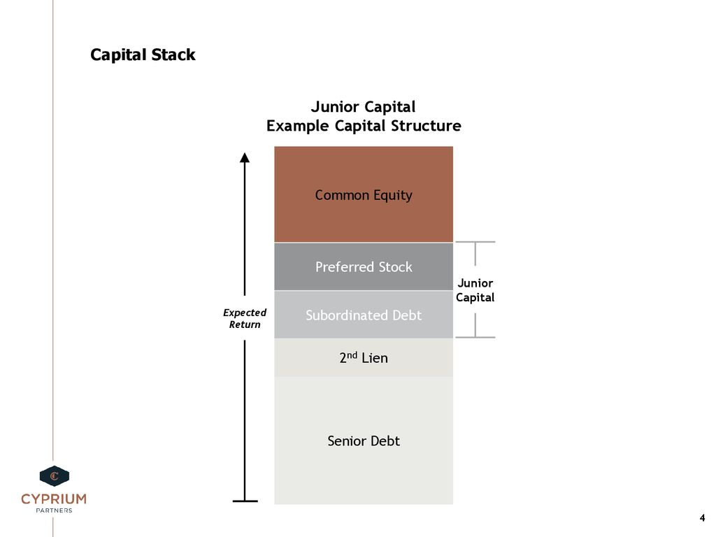 The Minority Recapitalization - ppt download