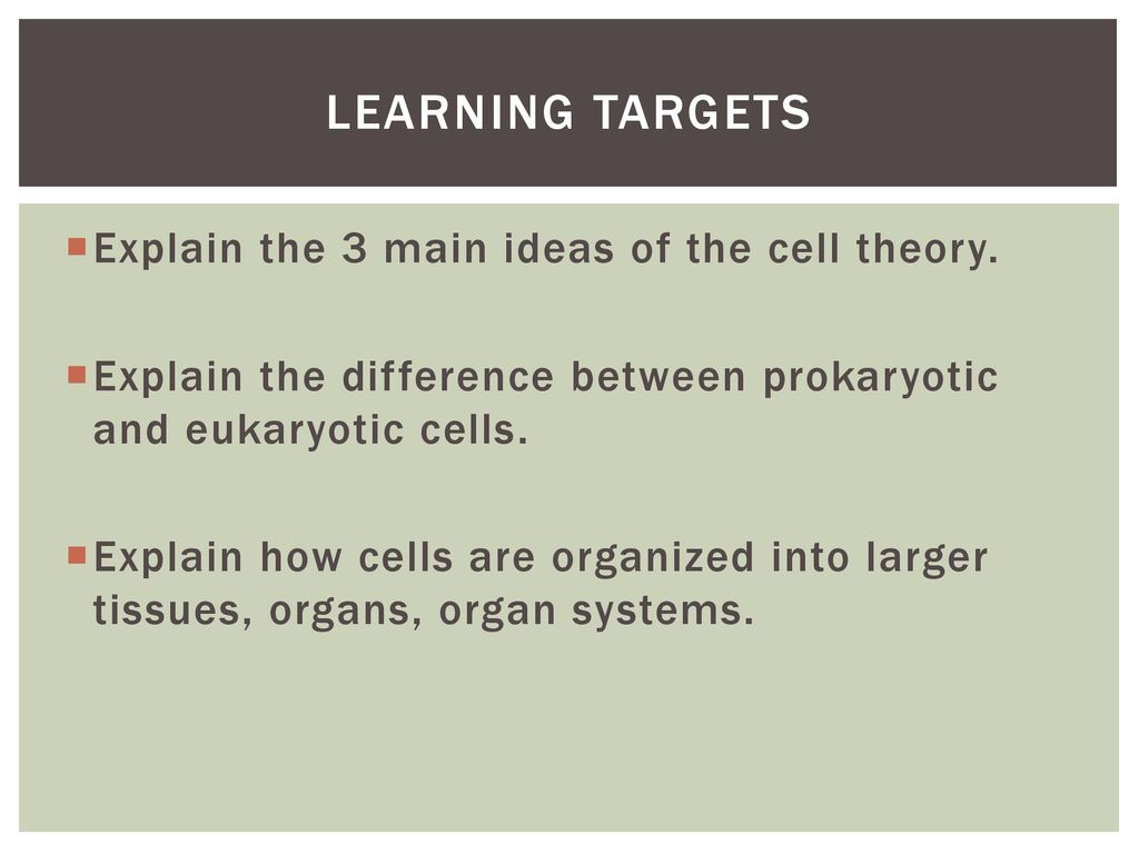 Bellringer Please Turn In The Notes You Took Over Virtual Prokaryotic And Eukaryotic Cells Diagram Front Yard Landscaping Learning Targets Explain 3 Main Ideas Of Cell Theory