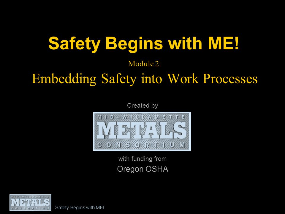 Module 2: Embedding Safety into Work Processes