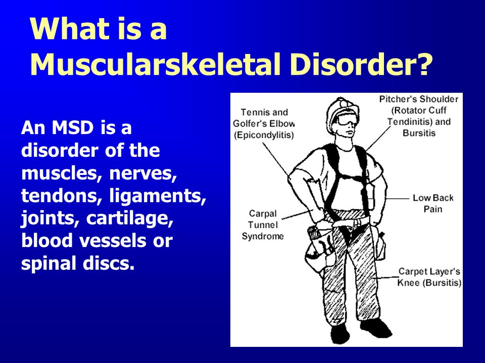What is a Muscularskeletal Disorder