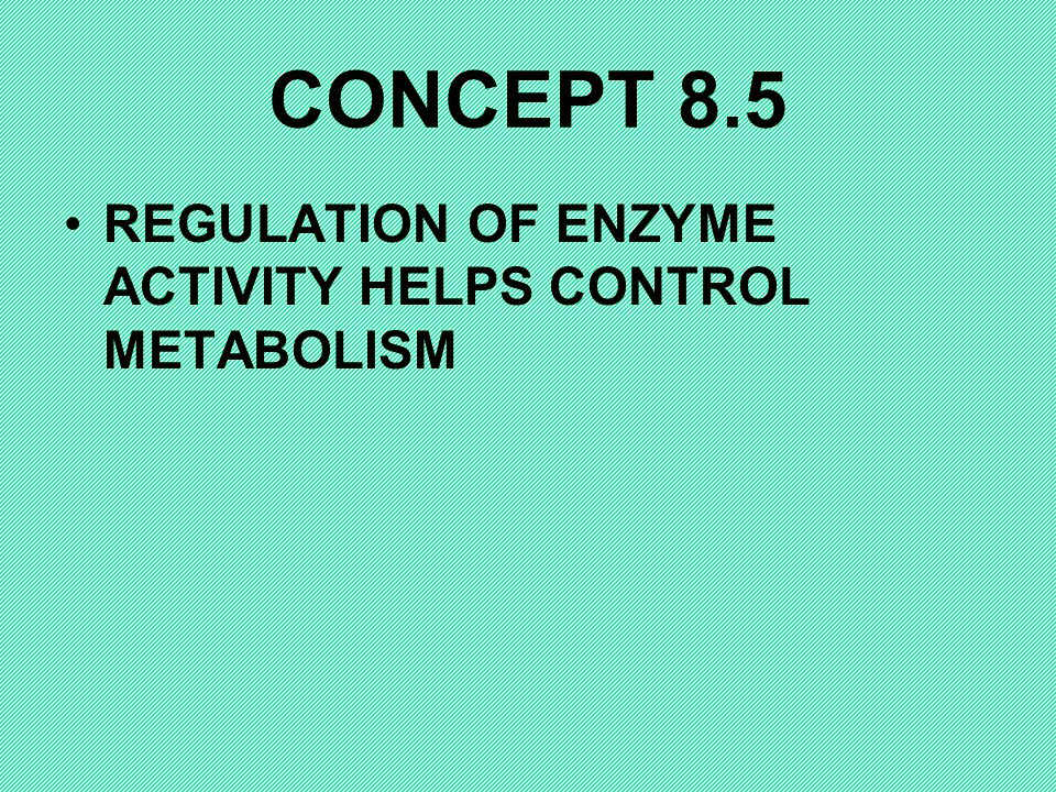 CONCEPT 8.5 REGULATION OF ENZYME ACTIVITY HELPS CONTROL METABOLISM