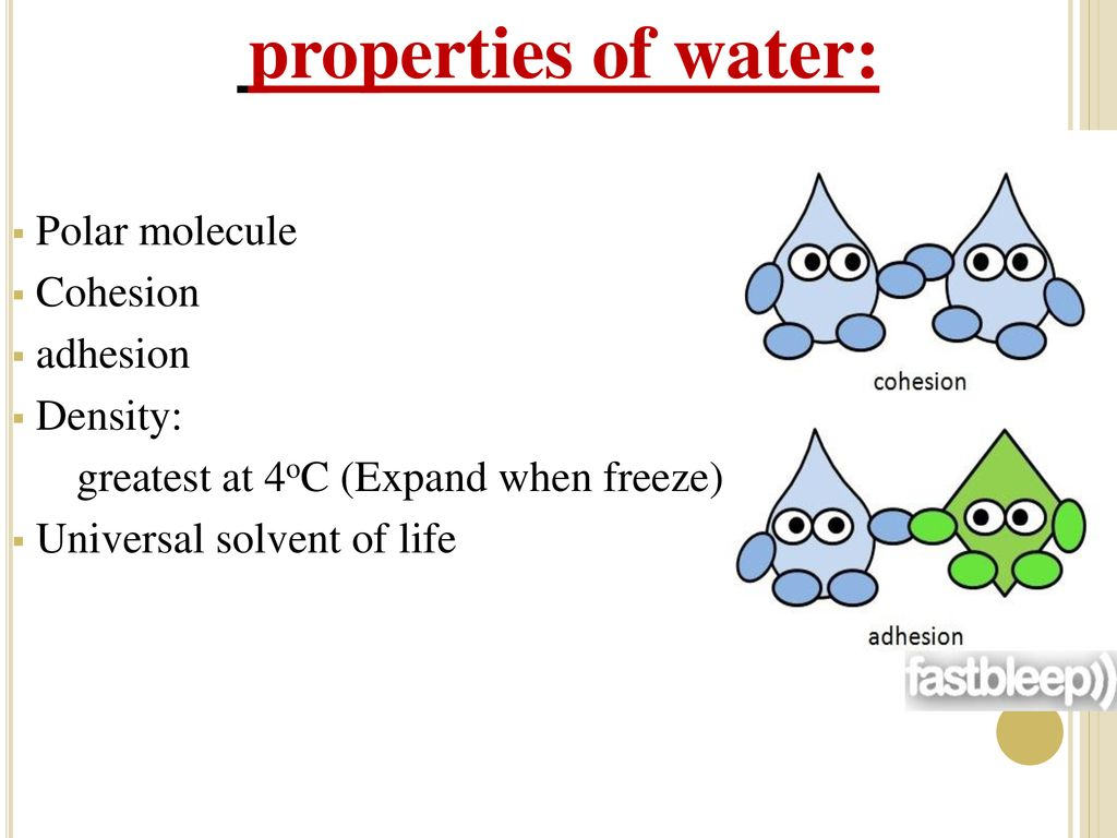 the 3 properties of water